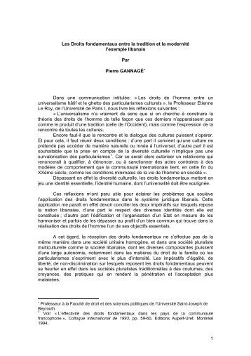 Protection droits fondamentaux conseil constitutionnel dissertation