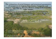 The estimation of aerial biomass and structural parameters of ...