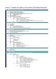 Classe 1 - Comptes de capitaux, de provisions et de dettes financières