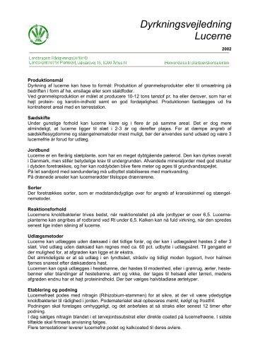 Dyrkningsvejledning Lucerne - LandbrugsInfo