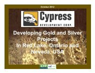 Developing Gold and Silver Projects In Red Lake ... - PrecisionIR