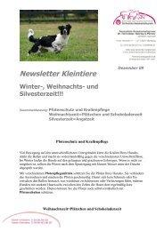 Newsletter als PDF-Dokument runterladen