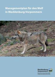 Managementplan für den Wolf in MV - MVnet