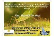 infecciones mezcladas de virus de papa y sus efectos en la biología ...