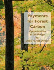 Payments for Forest Carbon: Opportunities and ... - Manomet
