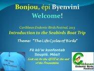 Sea Birds of Dominica