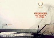 Copenhagen CleanteCh Cluster