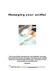 Massaging your aniMal - Buddha Dog Animal Massage
