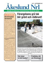Förargelsens grå tak blir grönt och rödbrunt! - Brf Åkeslund nr1