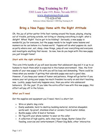Bring A New Puppy Home with the Right Attitude - Dog Training By PJ