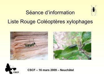 Séance d'information Liste Rouge Coléoptères xylophages - CSCF