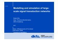 Modelling and simulation of large- scale signal transduction ... - ESAO