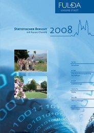 Statistischer Bericht 2008 - in Fulda