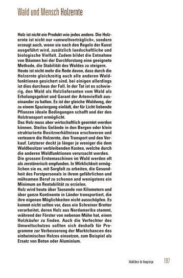 Holzernte - Wald.ch