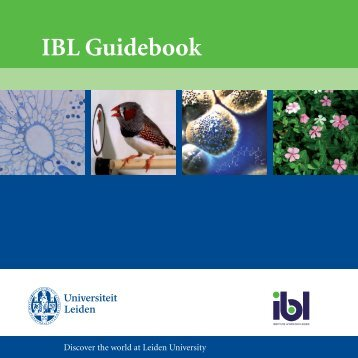 IBL Guidebook