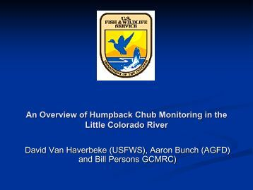 VanHaverbeke, An Overview of Humpback Chub Monitoring in the ...