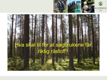 Glommen Skog