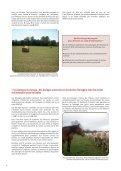 Quelles pratiques d'alimentation dans les élevages de sport - Page 4