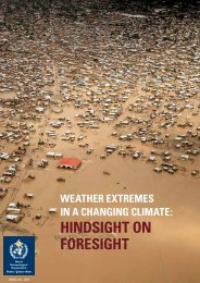 hindsight on Foresight - E-Library - WMO