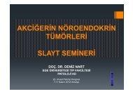 akciğerin nöroendokrin tümörleri slayt semineri doç. dr. deniz nart ...