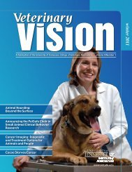 w inter 2011 - The University of Tennessee College of Veterinary ...