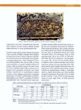 Özet/Tam metin - Page 3