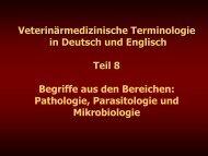 Teil 8 - Veterinärmedizinische Universität Wien