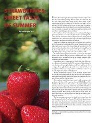 STrAWBerrIeS: SWeeT TASTe OF Summer - Edible Communities ...