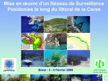 Les sites du RSP Corse - Ifremer