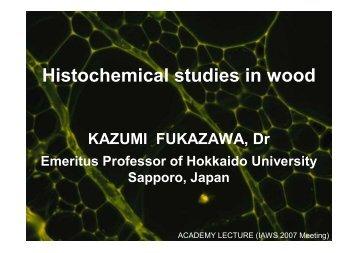 Fukazawa_IAWS_2007-10-25.pdf, 40 pages, 3 903 364 bytes