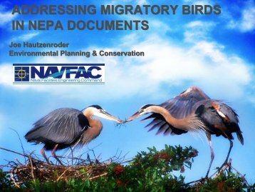 addressing migratory birds in nepa documents - Dodworkshops.org