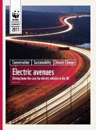 Electric avenues - WWF UK