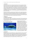 Dugong dugon - Sirenian International - Page 6