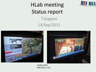 HLab meeting Status report