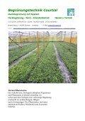 Pflanzenmatte - Vegetationsmatten - Seite 2