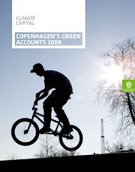 COPENHAGEN'S GREEN ACCOUNTS 2008 - Itera