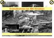 Erstmaßnahmen SLS 2008.pdf - ABC-Einsatzhandbuch