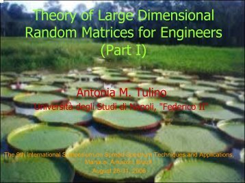 Random Matrices and Wireless Communications