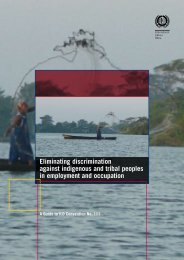 Eliminating discrimination against indigenous and tribal peoples in ...