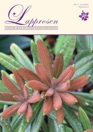 Utgave nr 2 - Den norske Rhododendronforening