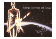 Energy conversion and storage - Energy Systems Research Unit