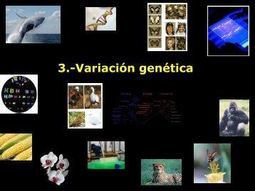 3.-Variación genética