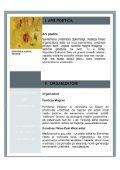 press kliping (.pdf 733 kB) - Page 3