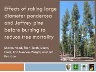 Forest floor consumption and tree injury after prescribed burning old ...