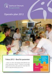 Operativ plan 2012 - Sykehuset Telemark