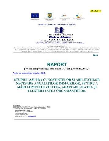 3.1. Analiza stării actuale în IMM-urile din Regiunea Centru cu ...