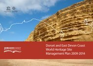 Dorset and East Devon Coast World Heritage Site ... - Jurassic Coast