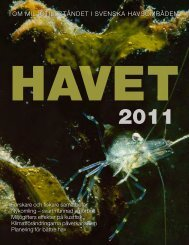Havet 2011 - Havsmiljöinstitutet