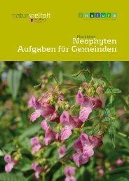 Merkblatt Neophyten - Aufgaben für Gemeinden - Neophyten in ...
