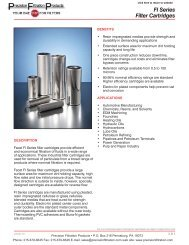 Facet FI Series Filter Cartridges - Precision Filtration Products